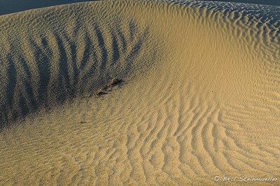 Death Valley Dunes #2